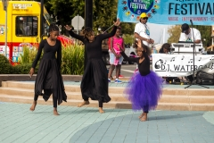 CITY_PITTSBURG_MULTICULTURAL_OCTOBER_2016 (742)